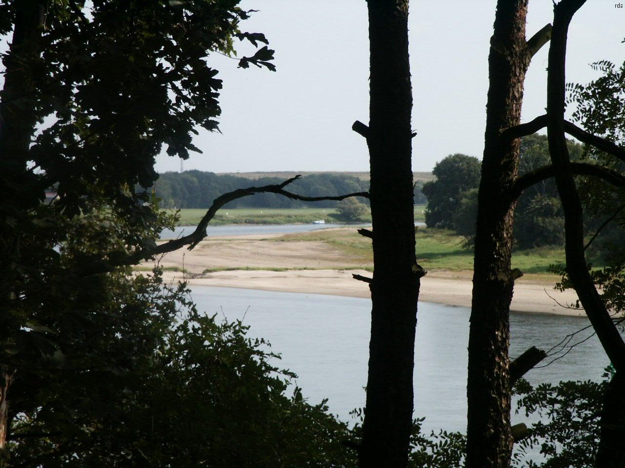 Elbe Wittenberg